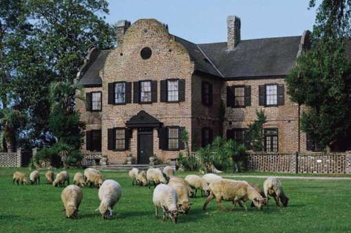 16VG_House-Museum-with-sheep_dcb28d1a-5056-a36a-06bc2a5d7e501e9b